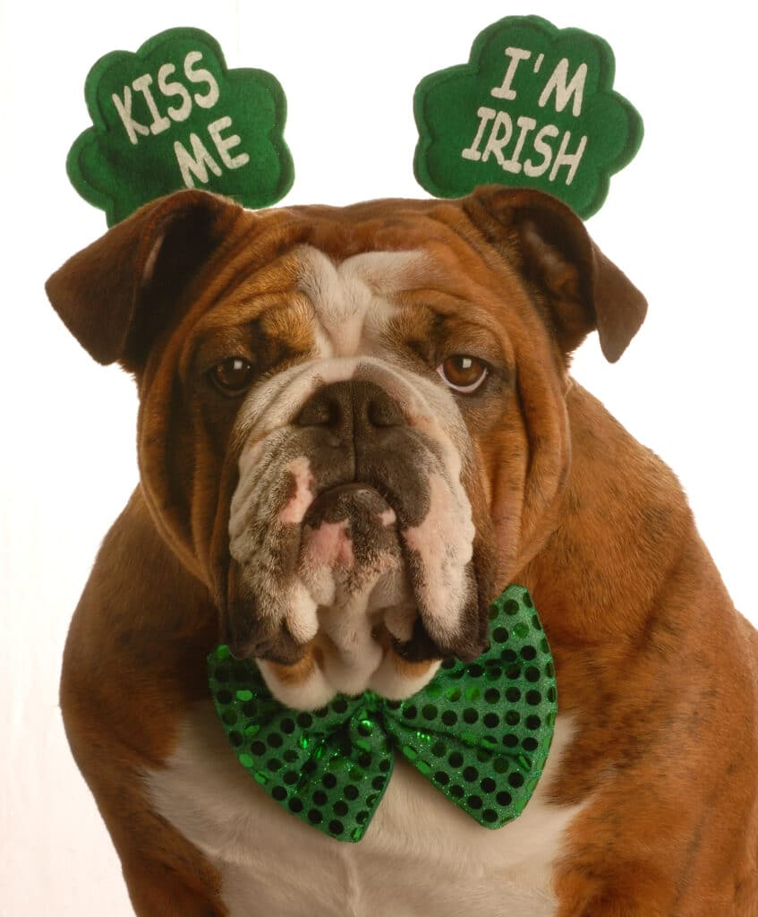 Home Health Care Marketing Ideas for St. Patrick's Day!